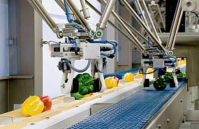 PICTURES ABOUT INDUSTRY OF PROCESSING, PACKAGING AND PRESERVING FOOD & AGRICULTURAL PRODUCTS